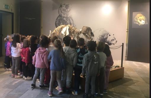 Una scolaresca in visita al museo Conti
