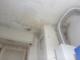 """""""Muffa sul soffitto e perdite d'acqua nella casa Atc: potete darmi una mano?"""""""