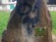 Il cippo vandalizzato