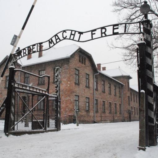 """""""Un Canto su Auschwitz"""", poesia per ricordare la Shoa"""