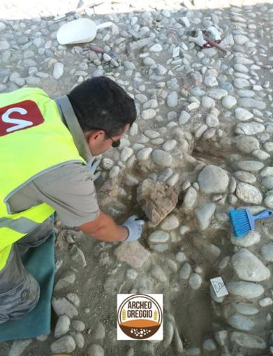 Visite guidate all'area archeologica di Greggio