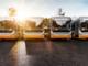 Vercellese: immatricolazioni dimezzate e un parco bus vecchio e inquinante