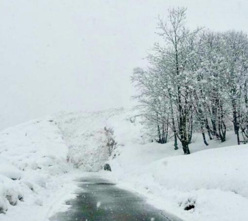 Val Sermenza: la slavina colpisce ancora. Isolate 19 persone