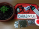 Parte del materiale sequestrato da carabinieri e Polizia locale