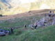 La tragedia di Castelmagno: morti cinque giovanissimi. Gli inquirenti indagano sulla dinamica e sulla portata del mezzo