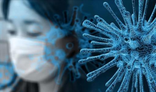 Il virus nel vercellese: 17 contagi e 27 guariti