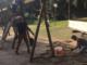Lavori in corso nei parchi della città