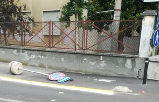Cestini rovesciati e giardino devastato: vandali scatenati