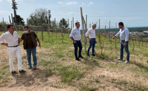 Grandine a Gattinara: Provincia e Regione promettono aiuti