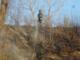 Baraggia: a fuoco 5mila metri quadri di prato