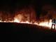 Dopo il grande incendio si lavora sulla prevenzione