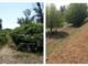 Un'immagine del parco (prima e dopo la riqualificazione)