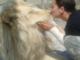 """""""Il circo rispetta gli animali: basta con certe falsità"""""""