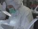 Valvole biologiche: un terzo della produzione va in Canada