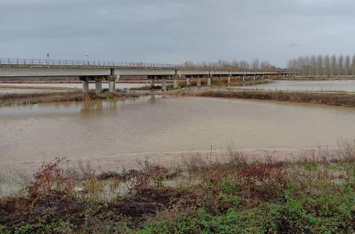Maltempo: dopo le piogge, si contano i danni
