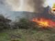 Cippato a fuoco nelle campagne di Moncrivello