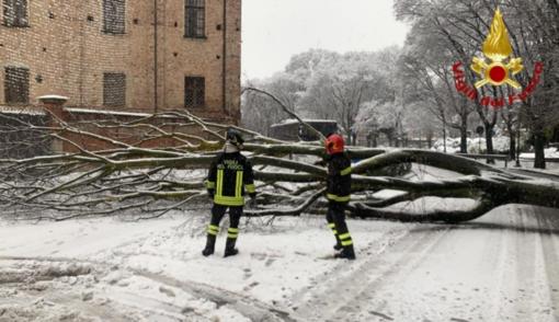Neve, maltempo e danni: oltre 40 interventi dei Vigili del Fuoco - FOTO