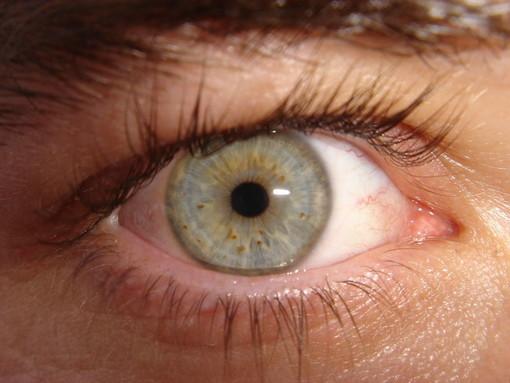 Prenditi cura della tua vista: iniziative gratuite di prevenzione