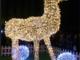 Si accendono le luci del Natale a Vercelli