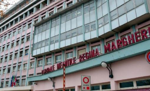 Bimba morsicata da una vipera: buone notizie dall'ospedale