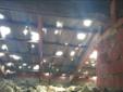 Stroppiana: tetto ridotto a groviera
