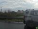 Pauroso testacoda in superstrada