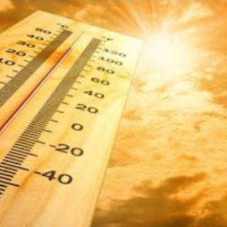 Meteo: viviamo l'inverno più caldo della storia