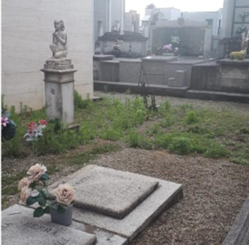 Cimitero di Billiemme: gli scout ripuliscono le tombe dimenticate