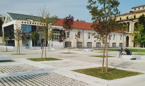 Università del Piemonte Orientale: online tutta l'offerta formativa