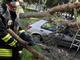 Ucciso dalla caduta di un albero: chieste 5 condanne