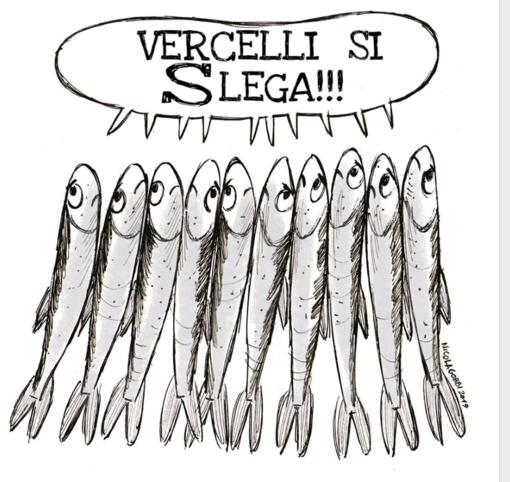 """Vercelli si Slega"": prima manifestazione per le Sardine vercellesi"